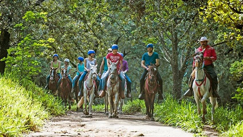 Horses, Hacienda Guachipelin Full Day Adventure