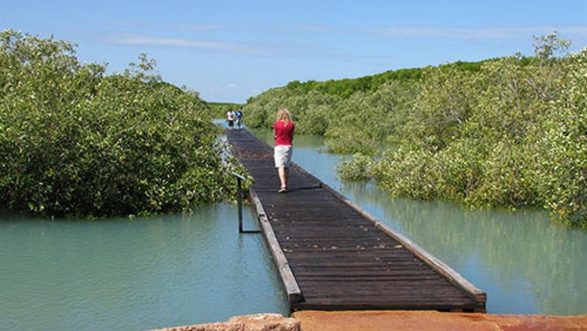 Half Day Broome Sights Tour streeters jetty, Half Day Broome Sights Tour