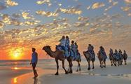 Half Day Broome Sights Tour camel cable, Half Day Broome Sights Tour