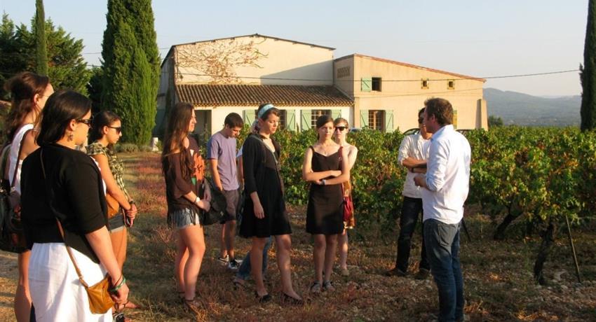 wineries, Half Day Wine Tour of Côtes de Provence Sainte-Victoire