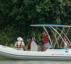 Half Day Eco Boat Tour Through Lake Gatun