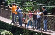 3, 8 Hanging Bridges Tour