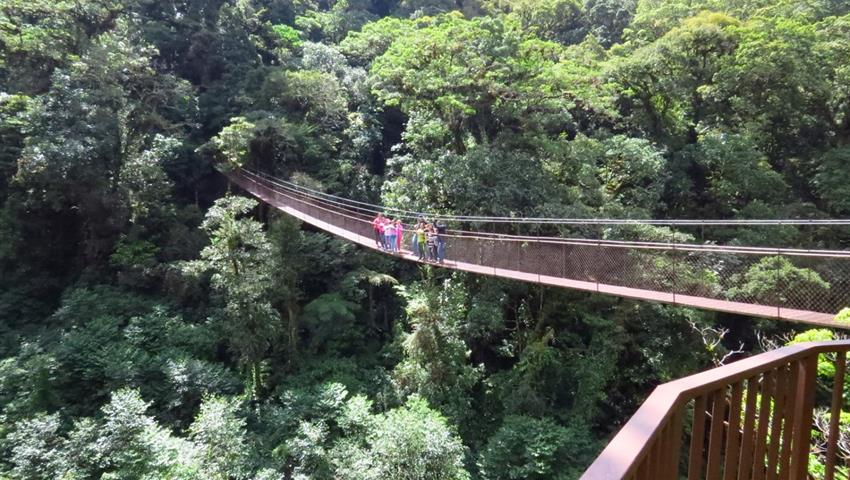 4, 8 Hanging Bridges Tour