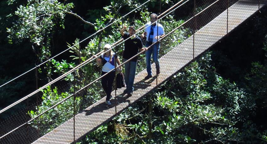 6, 8 Hanging Bridges Tour