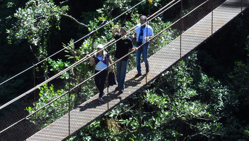 6, 8 Hanging Bridges Tour
