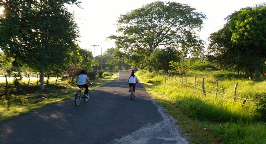 5, Hiking, Bicycling and Beach
