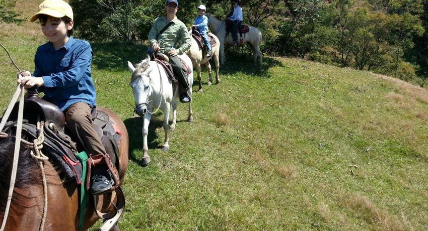 1, Horse Riding Experience in Caldera