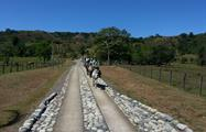 2, Horse Riding Experience in Caldera