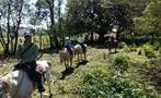 3, Horse Riding Experience in Caldera