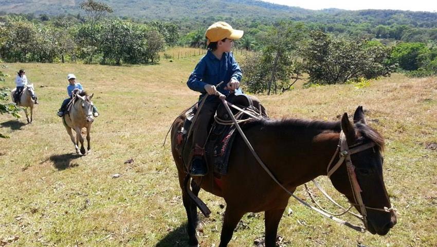 4, Horse Riding Experience in Caldera