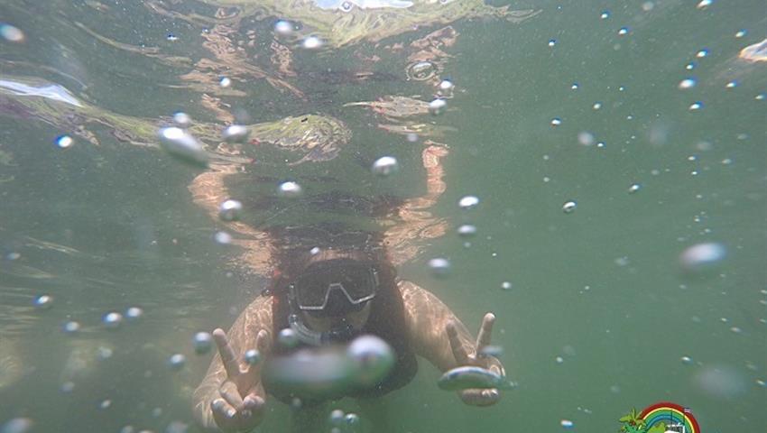underwater, Isla Tortuga Full Day Tour