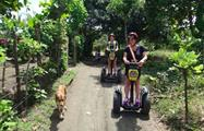 2, Island and Beach Segway Tour