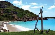 1, Caja de Muertos Island One Day Tour