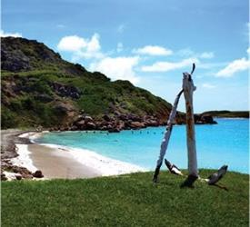 Caja de Muertos Island One Day Tour