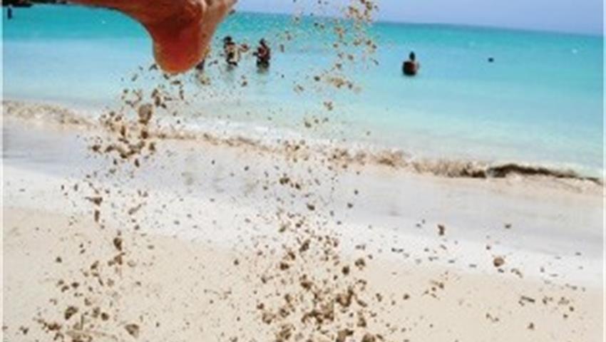 3, Caja de Muertos Island One Day Tour