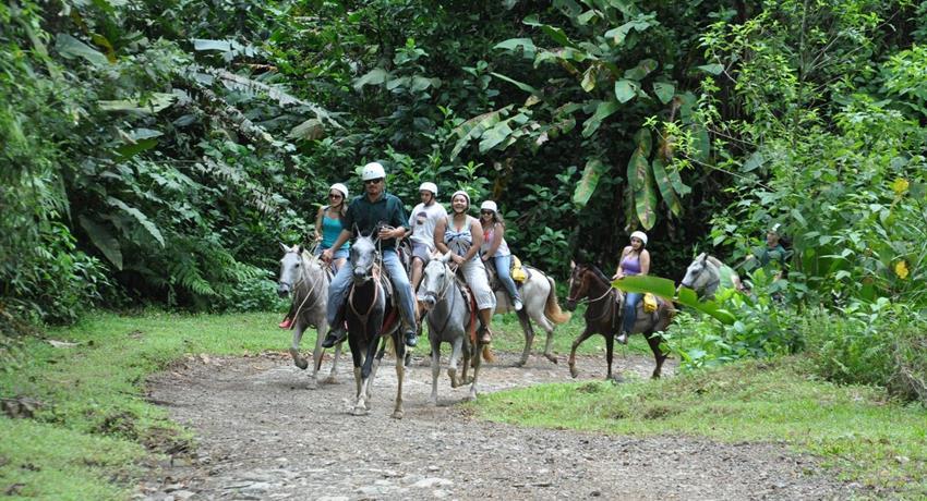 Rider, Jaco 3-Hour Horseback Riding Tour