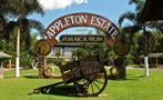 1, Appleton Estate Rum Factory Roundtrip