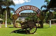 1, Appleton Estate Rum Factory Roundtrip