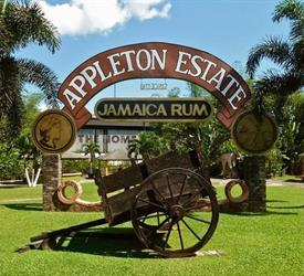 Appleton Estate Rum Factory Roundtrip