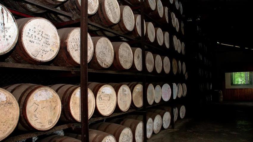 2, Appleton Estate Rum Factory Roundtrip