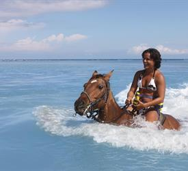 Beach Heritage Horseback Ride