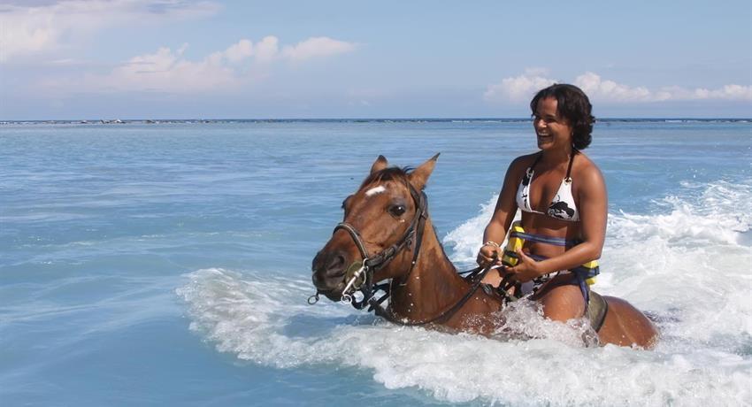 1, Beach Heritage Horseback Ride
