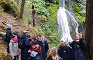 waterfall tiqy, Jet Boat and Wilderness Walk