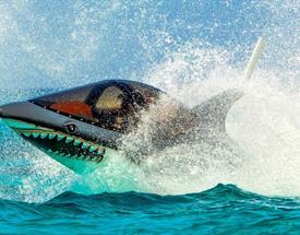 Seabreacher The Ultimate Ride