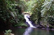 rainforest hike tour waterfalls, 4 Días / 3 Noches en Bosque Nuboso