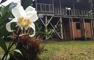 rainforest hike tour accomodation, 4 Días / 3 Noches en Bosque Nuboso