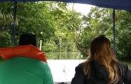 Lake Gatun and Monkey Island Half Day Tour 6, Tour de Medio Día por el Lago Gatún y la Isla de los Monos desde la Ciudad de Panamá