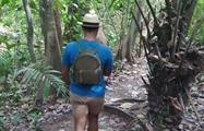 tour 3, Tour de Medio Día por el Lago Gatún y la Isla de los Monos desde la Ciudad de Panamá