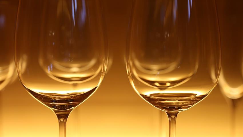 Wine tasting in old winery, Madrid Wine Tour