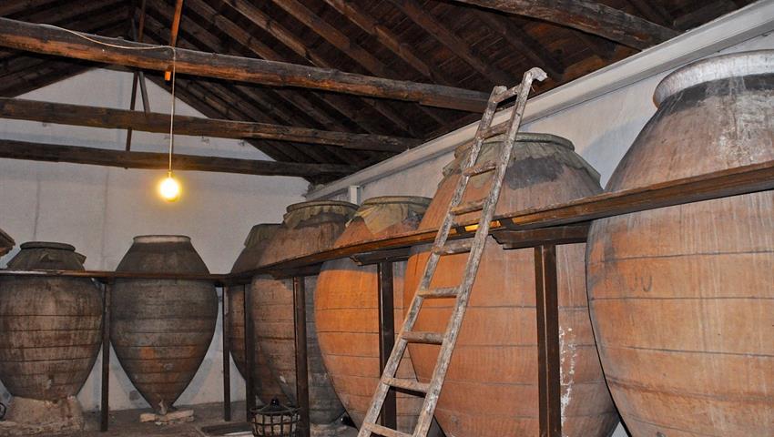 Cavas, Madrid Wine Tour