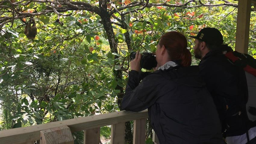 mirador, Manuel Antonio National Park 4-Hour Tour