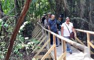 Bridge, Manuel Antonio National Park 8-Hour Tour