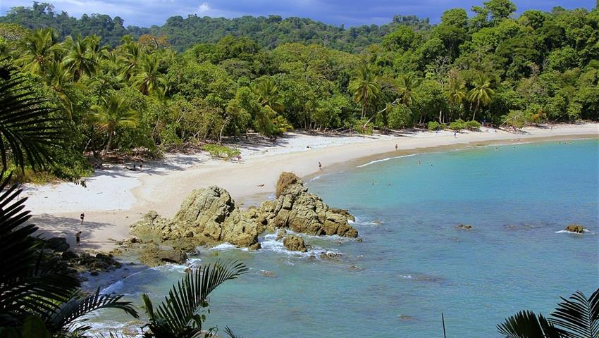 Manuel Antonio National Park, Manuel Antonio National Park Full Day Tour