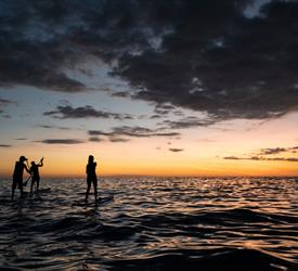 Manuel Antonio Nocturnal Paddle Boarding Tour, Water Activities in Costa Rica