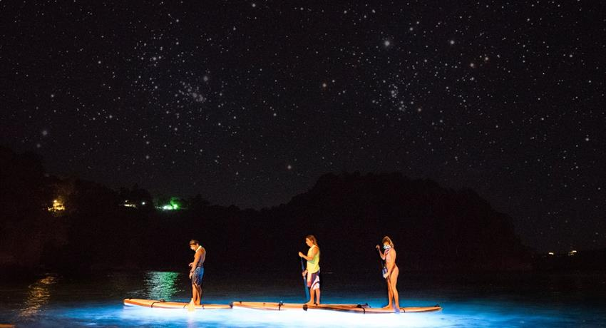 oh boy, Manuel Antonio Nocturnal Paddle Boarding Tour