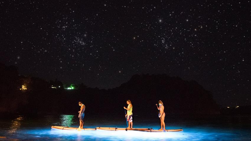 oh boy, Tour de Paddle Boarding Nocturno en Manuel Antonio