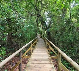 Senderismo en el Parque Manuel Antonio, Tours De Aventura en Jaco, Costa Rica