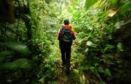 Hiking,  Manuel Antonio Park Hiking Tour