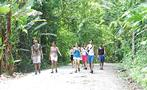 The hiking tour,  Manuel Antonio Park Hiking Tour