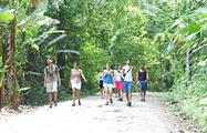 The hiking tour, Senderismo en el Parque Manuel Antonio