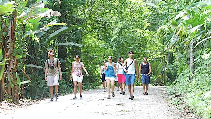 The hiking tour,  Manuel Antonio Park Hiking Tour