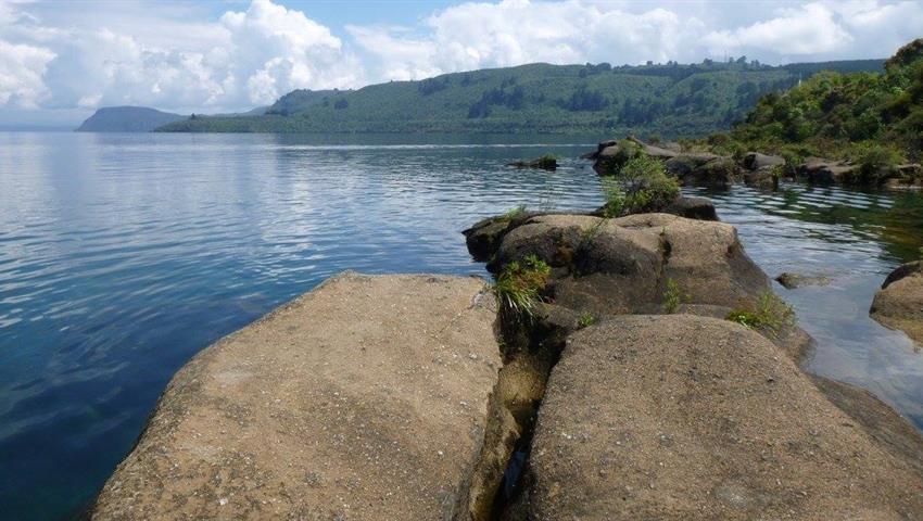 rocks tiqy, Maori Rock Carvings Tour