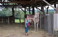 2, Horseback Riding to Xunantuninch Ruins