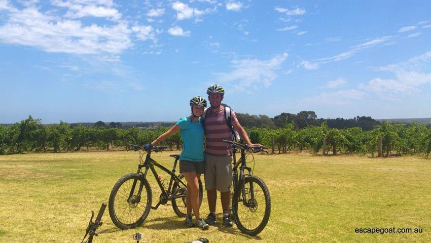 McLaren Vale Bike and Wine Day Tour, McLaren Vale Bike and Wine Day Tour