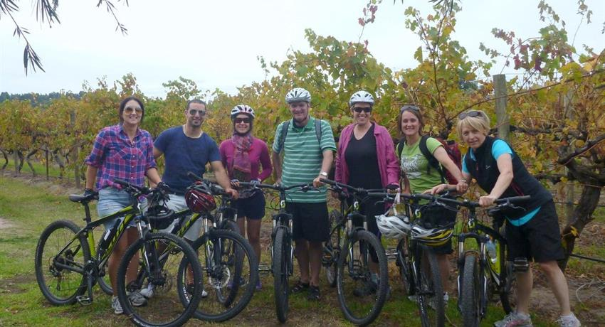 McLaren Vale Bike and Wine Day Tour group people, McLaren Vale Bike and Wine Day Tour