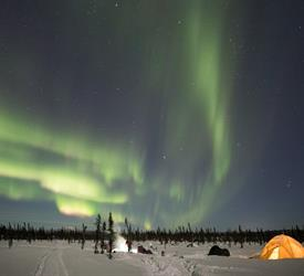 Midnight Mushing Aurora Tour